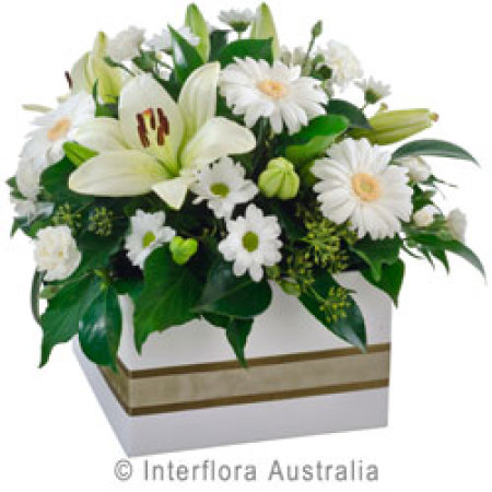 Large Box of White Classic Blooms