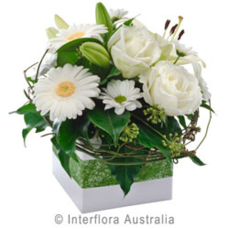 Box arrangement of white classic blooms