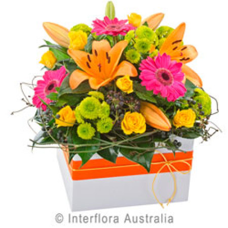 Fiesta Large Colourful Box Arrangement