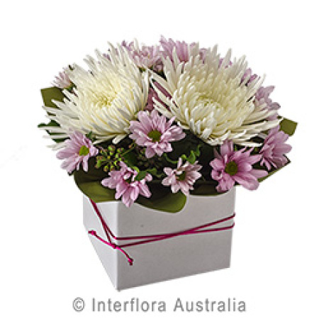 Box  Arrangement  in pinks and white