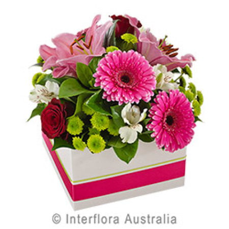 Mia  Large Box of Pink and white Blooms