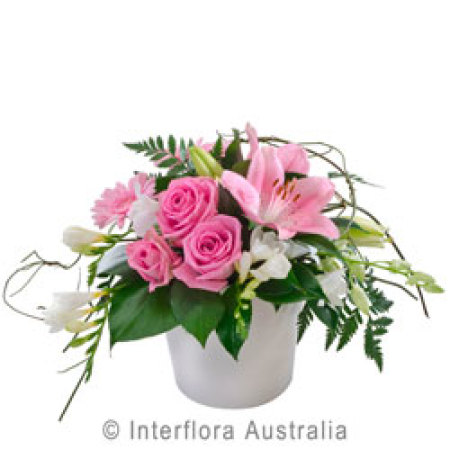Blush Pot Arrangement