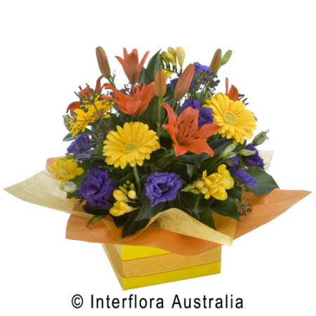 Colourful Box Arrangement