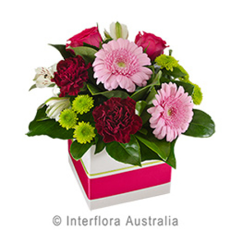 Box of Pink Gerbera Carnations and Roses