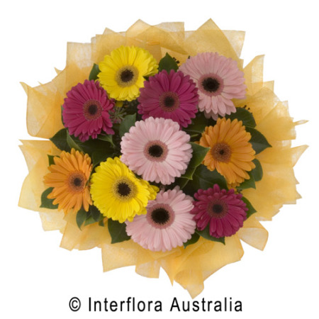 bouquet of mixed Gerbera