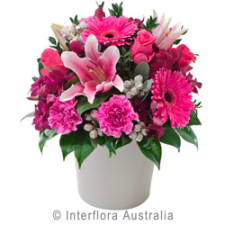 Pot Arrangement of Pink Blooms
