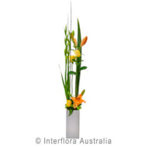Fleur Large Modern Pot Arrangement